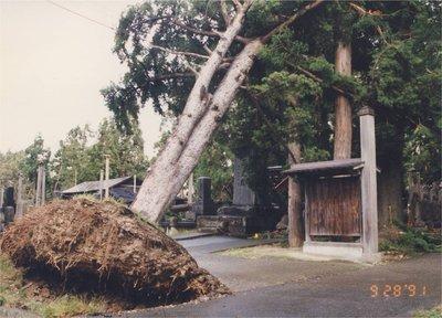 台風19号1.jpg