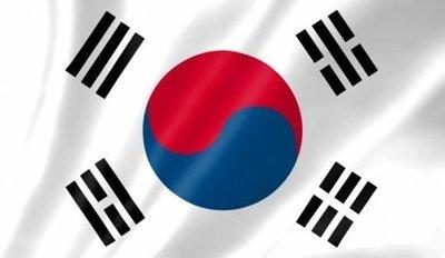 韓国の国旗.jpg