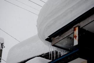 我が家の雪1.jpg