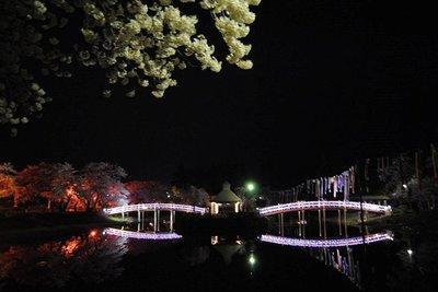 梨木公園1.jpg